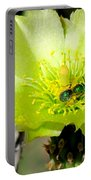 Green Cholla Beauty Portable Battery Charger