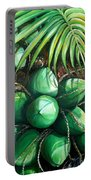 Green Coconuts  3  Sold Portable Battery Charger