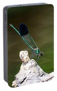 Green Damselfly  Portable Battery Charger