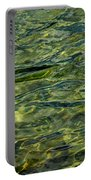 Green Diamonds Portable Battery Charger