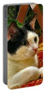 Green Eyed Girl Portable Battery Charger