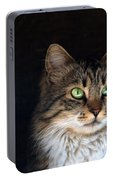 Green Eyes Portable Battery Charger