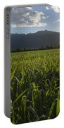 Green Field In Sunset Portable Battery Charger