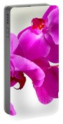 Green Field Sweetheart Orchid No 1 Portable Battery Charger