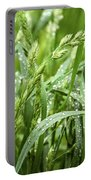 Green Grass After Rain Portable Battery Charger