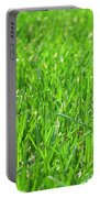 Green Grass Portable Battery Charger