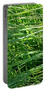Green Grass Growing Portable Battery Charger