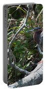 Green Heron 1 Portable Battery Charger