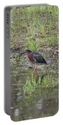 Green Heron Along Shore Portable Battery Charger