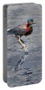 Green Heron In Swannanoa North Carolina Portable Battery Charger