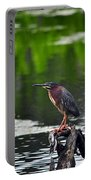 Green Heron Perch Portable Battery Charger