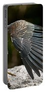 Green Heron Pictures 382 Portable Battery Charger