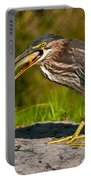 Green Heron Pictures 457 Portable Battery Charger