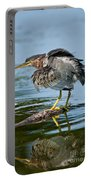 Green Heron Pictures 469 Portable Battery Charger