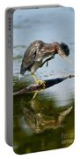 Green Heron Pictures 488 Portable Battery Charger