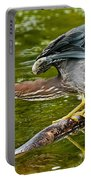 Green Heron Pictures 522 Portable Battery Charger