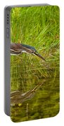 Green Heron Pictures 534 Portable Battery Charger