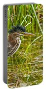 Green Heron Pictures 545 Portable Battery Charger