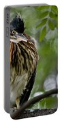 Green Heron Waves Hello Portable Battery Charger