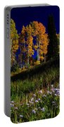 Green Hills Of Earth Portable Battery Charger