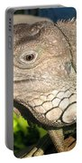 Green Iguana Face Portable Battery Charger