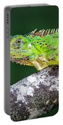Green Iguana Iguana Iguana, Tarcoles Portable Battery Charger