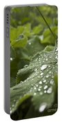 Green Leaf And  Fresh Water Pearl Portable Battery Charger
