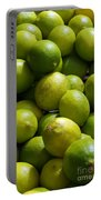 Green Limes Portable Battery Charger