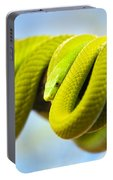 Green Mamba Coiled Up On A Branch Portable Battery Charger