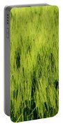 Green Nature Portable Battery Charger