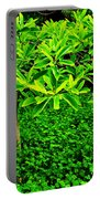Green On Green Portable Battery Charger