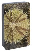 Green Sea Urchins Portable Battery Charger