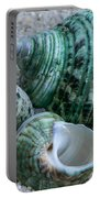 Green Seashells Portable Battery Charger