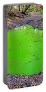 Green Spill Portable Battery Charger