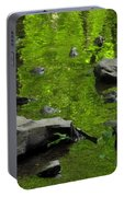 Green Stream Portable Battery Charger