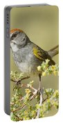 Green-tailed Towhee Portable Battery Charger