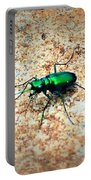 Green Tiger Beetle Portable Battery Charger