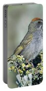 Green Towhee Portable Battery Charger