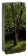 Green Tree In Park Portable Battery Charger