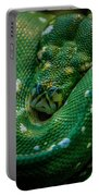 Green Tree Python Curled Portable Battery Charger