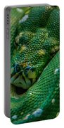 green tree python Macro Portable Battery Charger