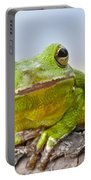 Green Treefrog Portable Battery Charger