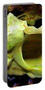 Green Turban Seashell Portable Battery Charger