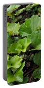 Green Vine Portable Battery Charger
