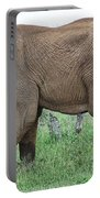 Greener Pastures-after The Rains Portable Battery Charger