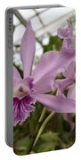 Greenhouse Ruffly Orchids Portable Battery Charger