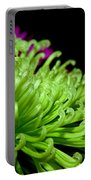 Greens Portable Battery Charger