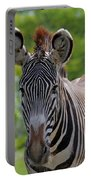 Grevy Zebra Portable Battery Charger