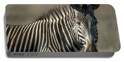Grevys Zebra Standing In Plains Kenya Portable Battery Charger