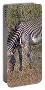 Grevys Zebra Portable Battery Charger